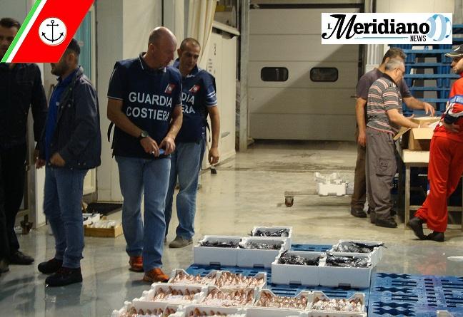 Blitz della Capitaneria di Porto di Napoli: sequestrate 2 tonnellate di pesce